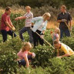 Mormon belief about welfare is rooted in principles of self-reliance
